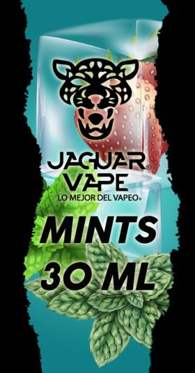 Mints 30ML